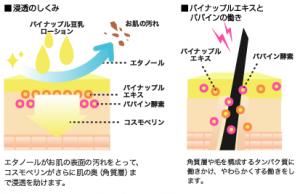 パイナップル豆乳ローションの抑毛効果を説明する図
